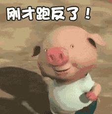抖音去找属猪的玩qq表情包