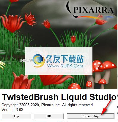 Pixarra TwistedBrush Liquid Studio