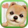 掌上狗狗 3.7.2安卓版