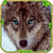 憤怒之狼模擬破解 1.1安卓無限金幣版