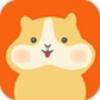 仓鼠账本 2.1.1安卓版