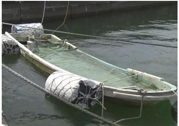 日本一渔船被海啸卷走失踪 6年后居然奇迹出现