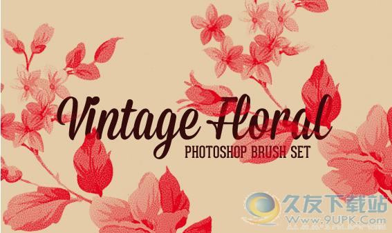 一组古典花朵photoshop笔刷插件 1.0绿色版截图(1)